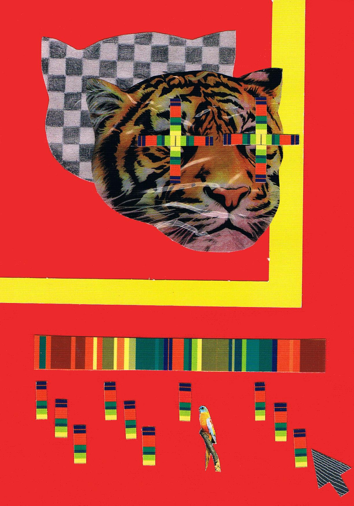 tygrys (1)